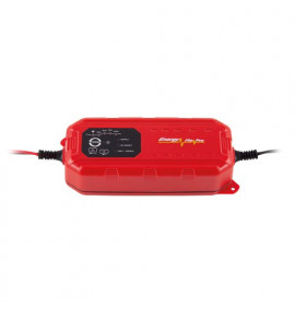 Chargestar 8DV Smart Battery Charger