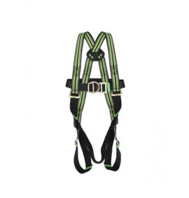 2 Point Full Body Harness