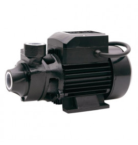 EP2M Electric Surface Water Pump