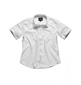 Dickies Ladies Oxford Short Sleeve Shirt