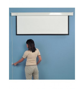 Electric Plug & Play Screens