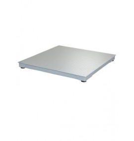 Floor Scale System - DSB4848-05