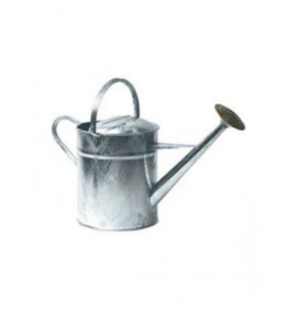 Galvanised Watering Can With Brass Rose