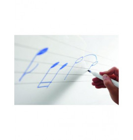 Gridded, Lined and Music Whiteboards - Magnetic