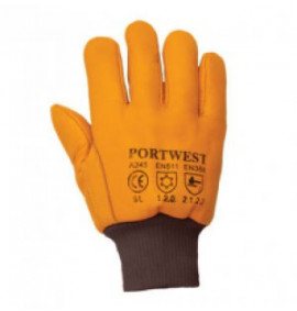 Portwest Antartica Thinsulate Glove