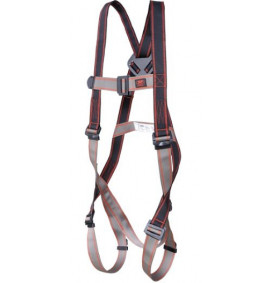 Pioneer 1-Point Harness