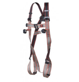 Pioneer 2-Point Harness