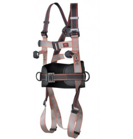 Pioneer 3-Point Harness