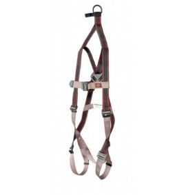 Pioneer 2-Point Rescue Harness