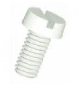 Polypropylene Fastener - Slotted Cheese Head Screws - Natural