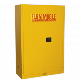 Flammables Storage Cabinet 1095 x 460 x 1655mm