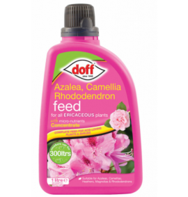 Azalea, Camellia & Rhododendron Feed Concentrate 1 Lit