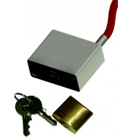 Lock and Lock Protector