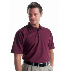 Dickies Short Sleeve Polo Shirt